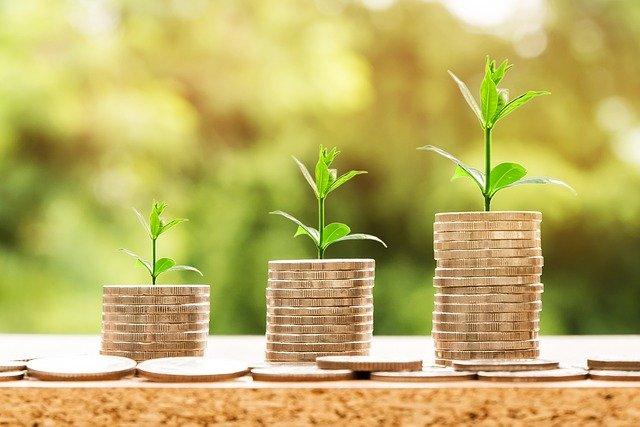 Plante qui poussent sur des pièces de monnaie