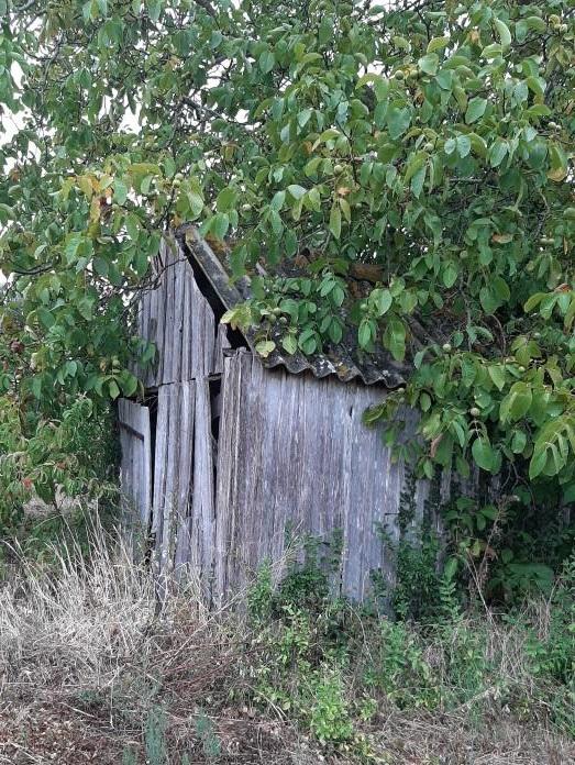 Une maison de vigne